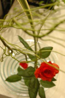 花遊び日常2
