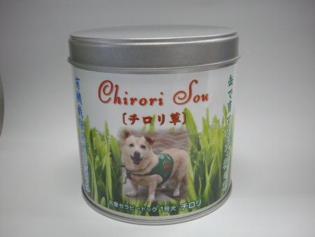チロリ草 001本体