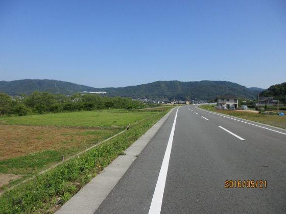 IMG_2011 (560x420)