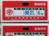 P1011839