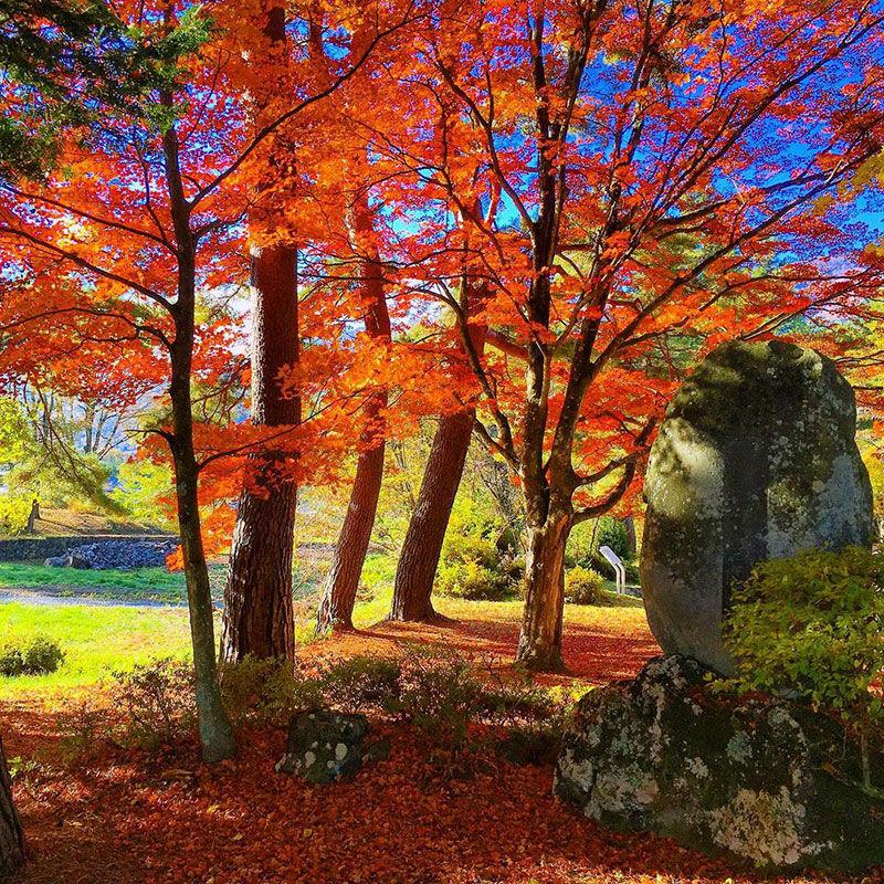 高原の町は紅葉いっぱい♪(4)
