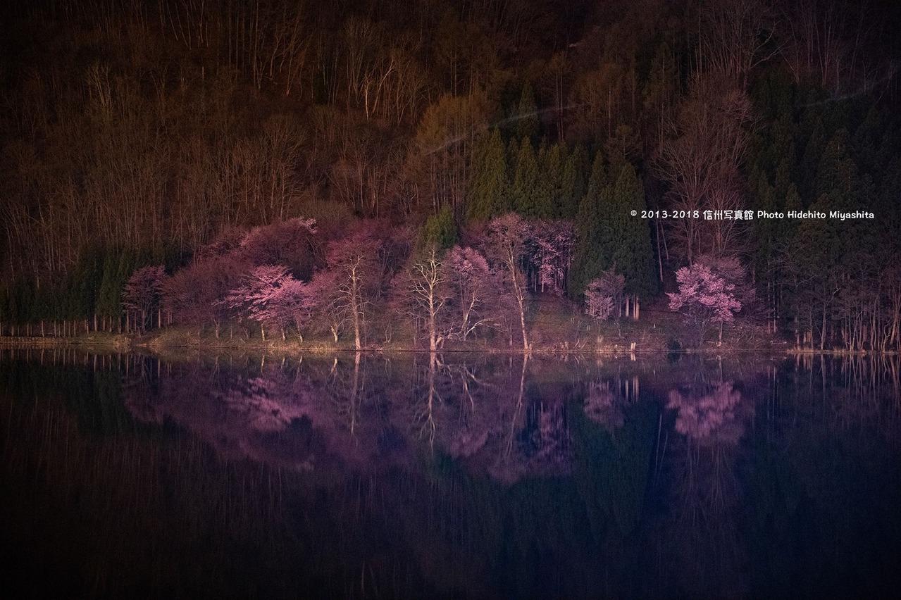 中綱湖の夜