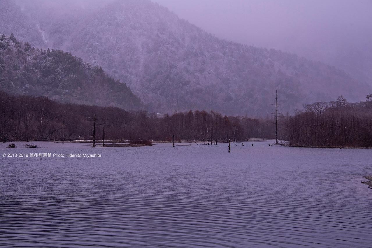 雪舞う大正池