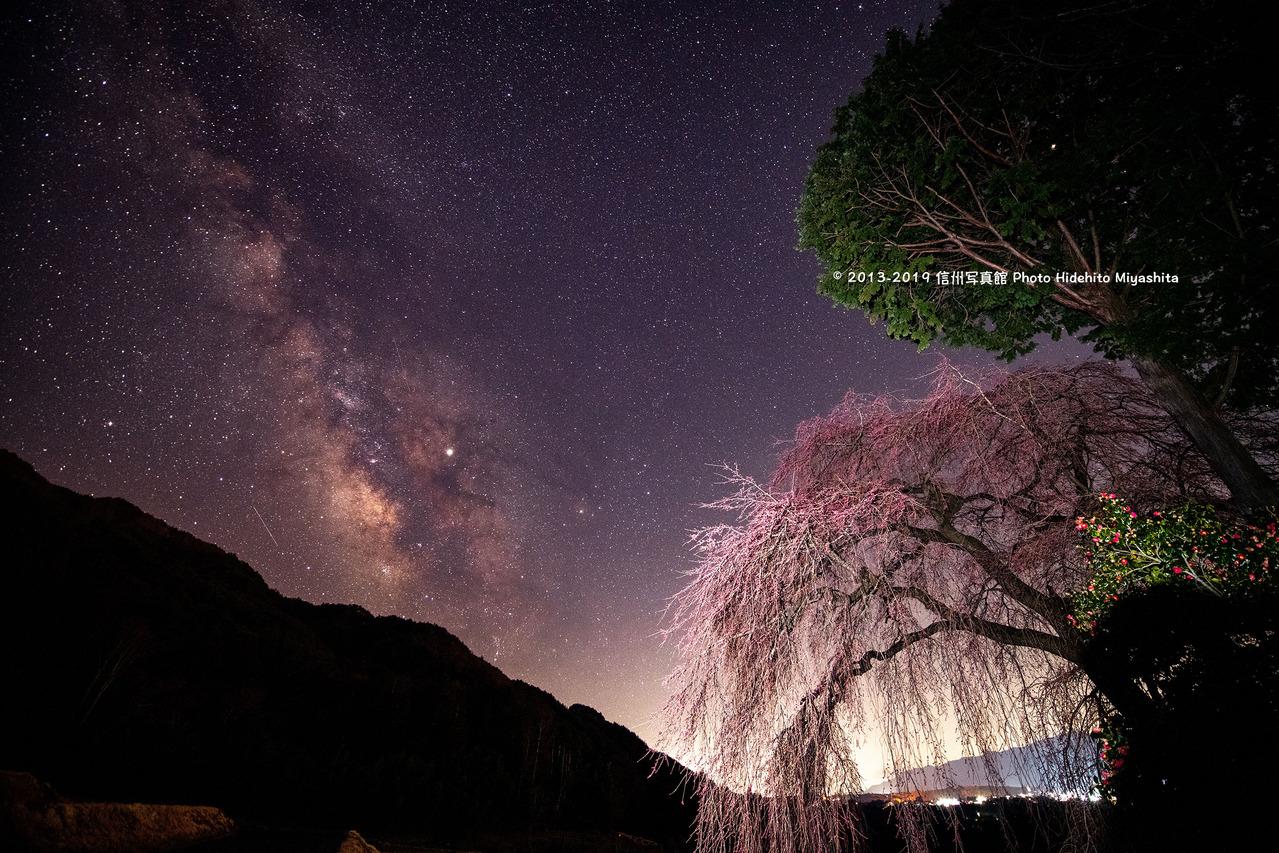 夏の銀河と桜 20190404-_DSC7148