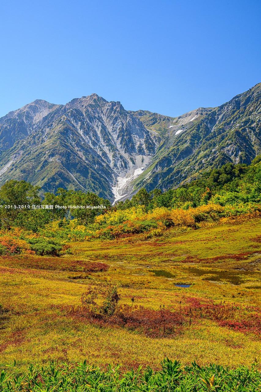 展望湿原から望む、白馬大雪渓