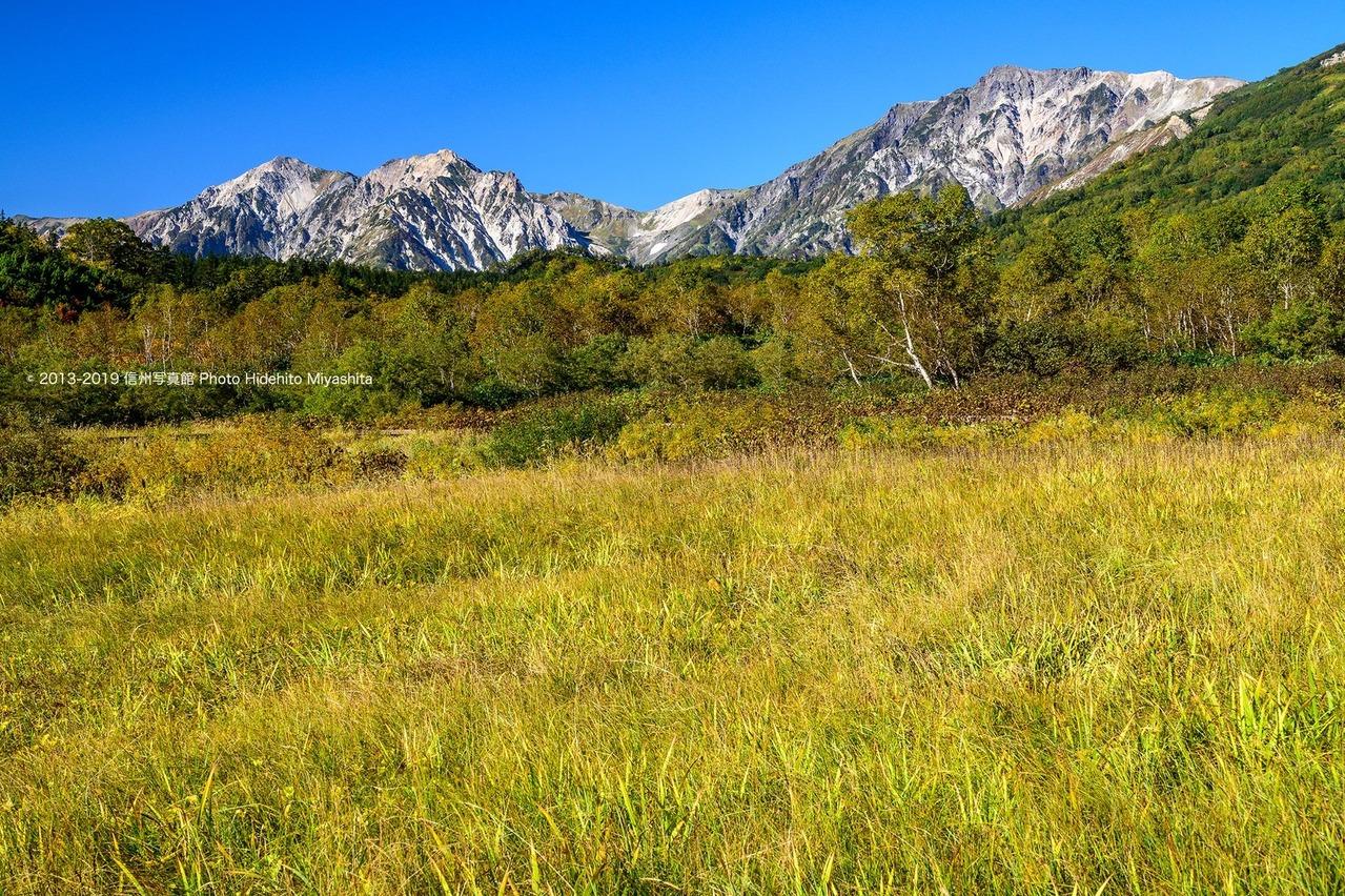 草紅葉のミズバショウ湿原