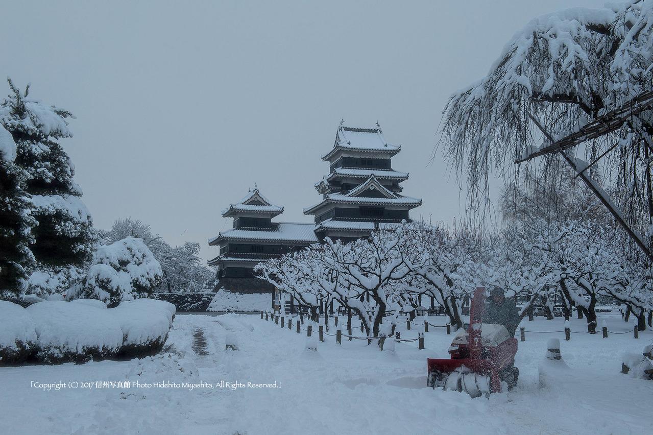 松本城 雪の朝20170109-_DSC5971