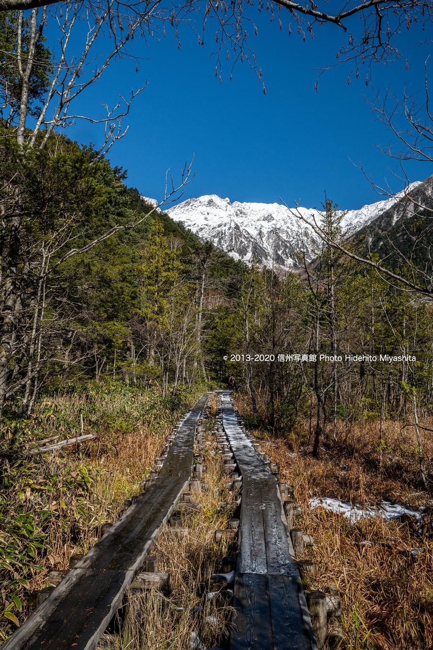 岳沢湿原を行く__20201105-_DSC8232