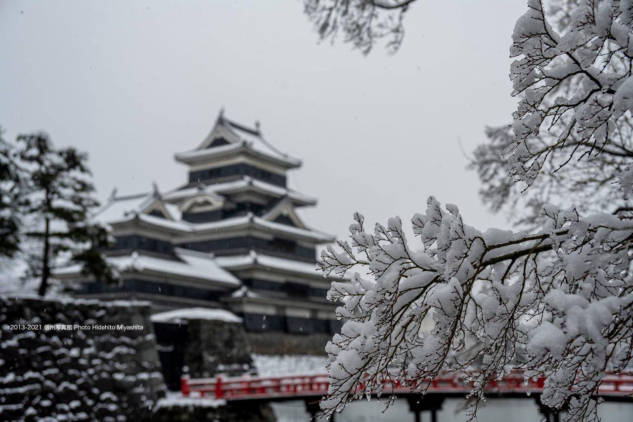 松本城・雪景