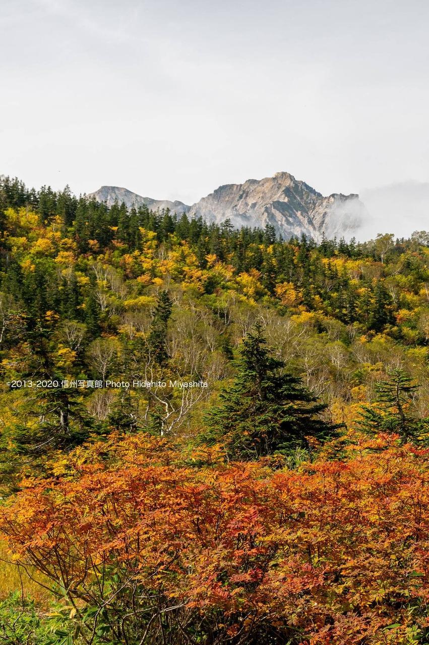 秋色の栂池
