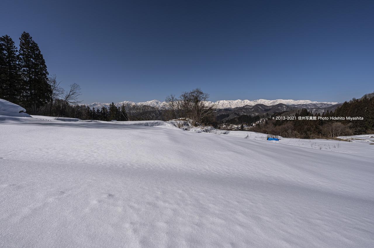 雪原広がる_20210214-_DSC6842