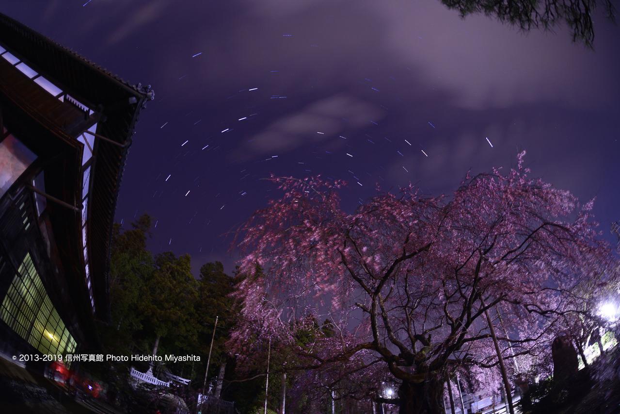 舞台桜と北天の空 20190406-_DSC5105