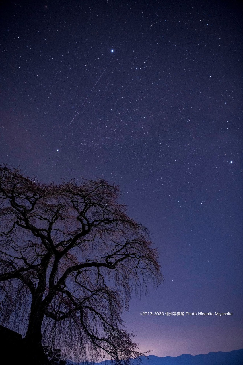 石塚桜と夏の大三角形とスターリンク衛星
