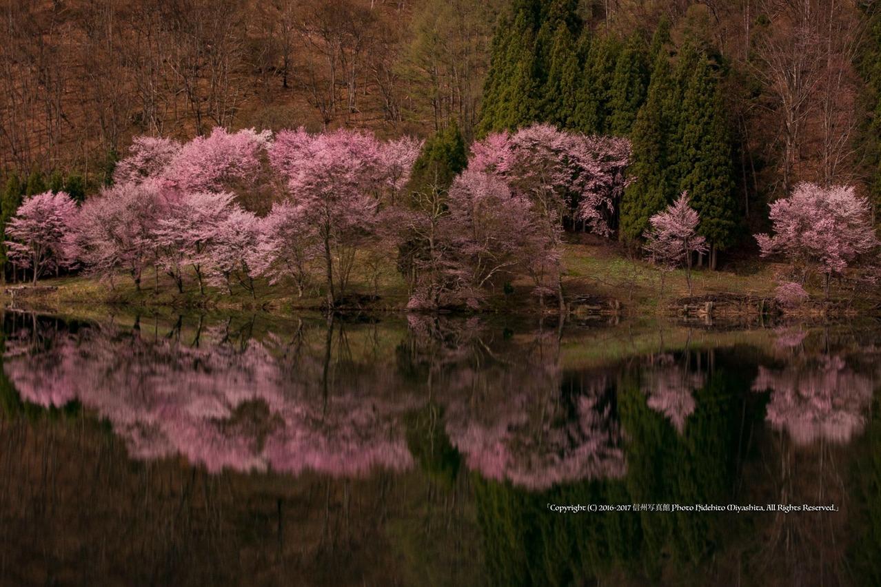 中綱湖 2016