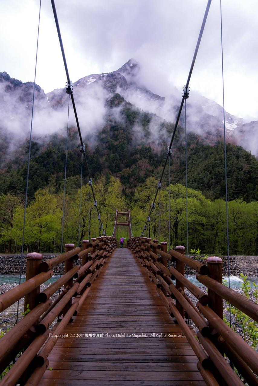 雨の明神橋を行く