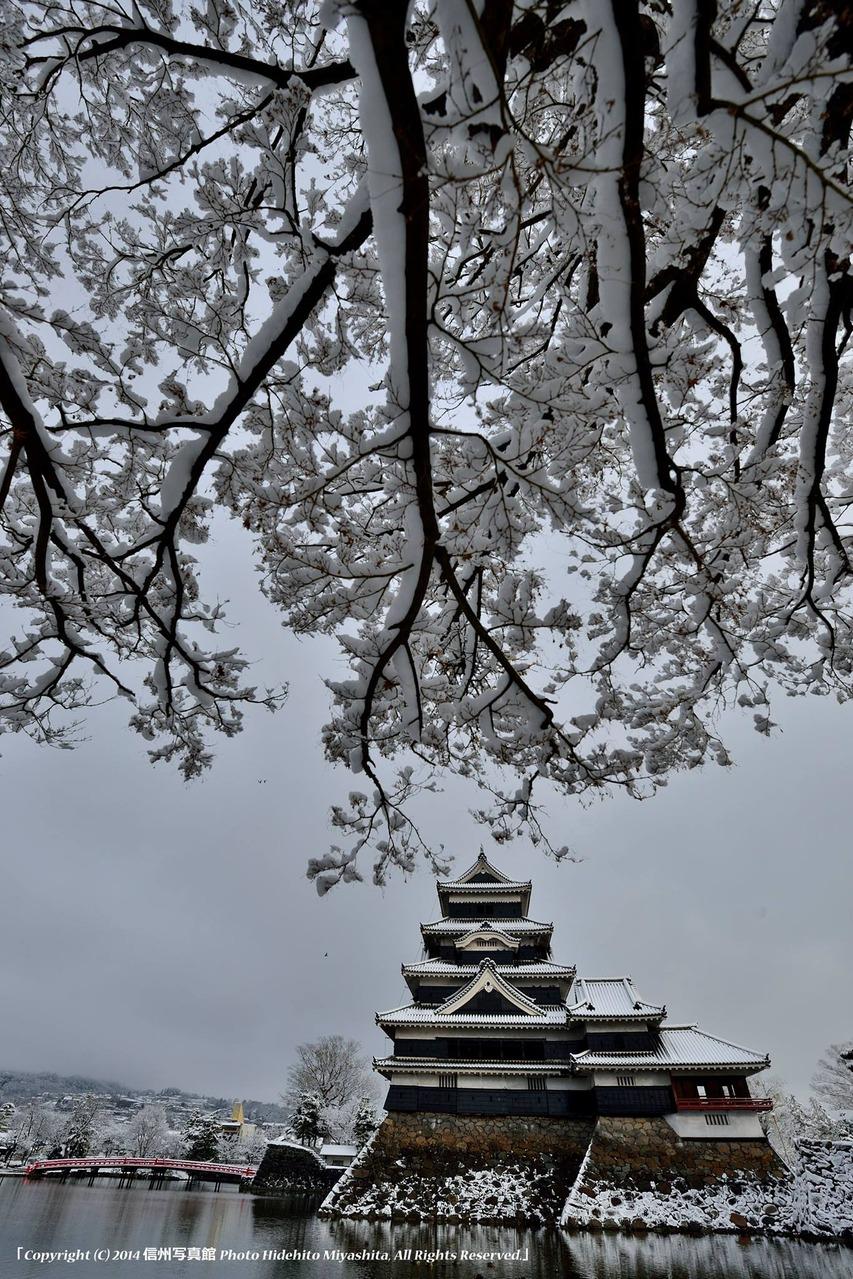 松本城を襲う