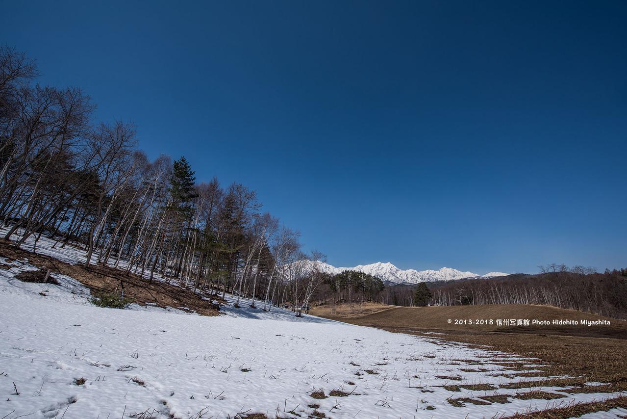 冬と春の境界線20180325-_DSC7062