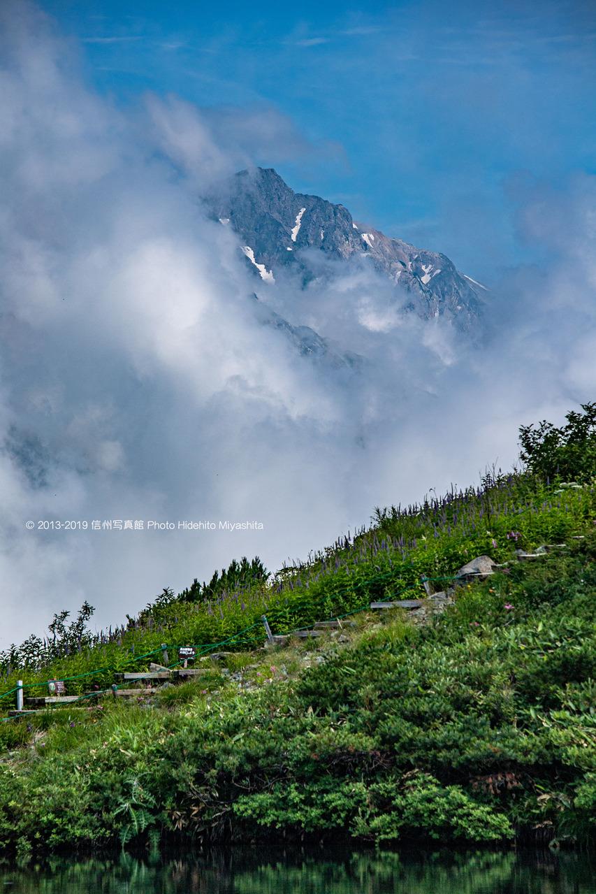 雲間の白馬岳 20190804-_DSC9507