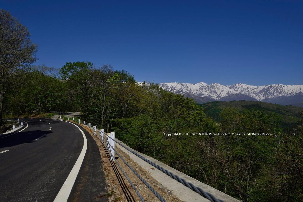 白馬三山を望む道