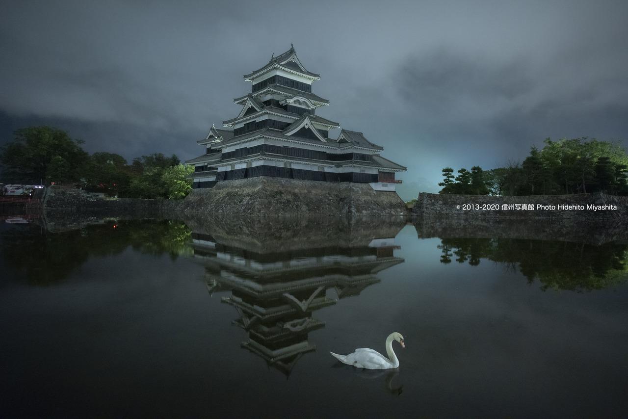 夜の松本城と白鳥_20200823-_DSC3062