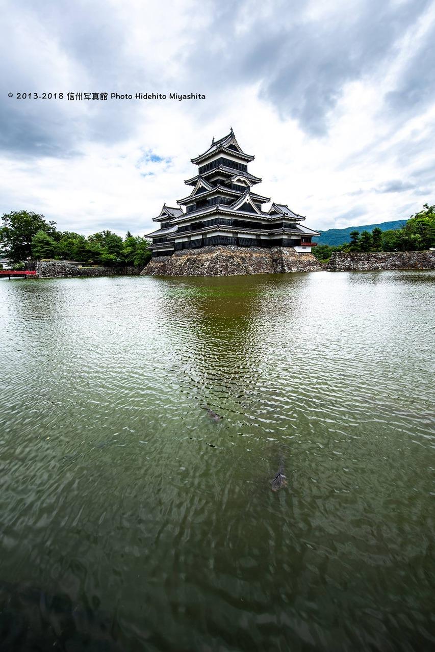 漣の松本城