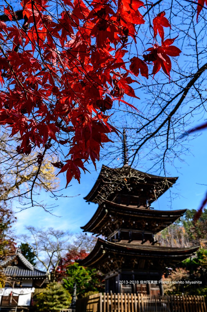 前山寺の紅葉