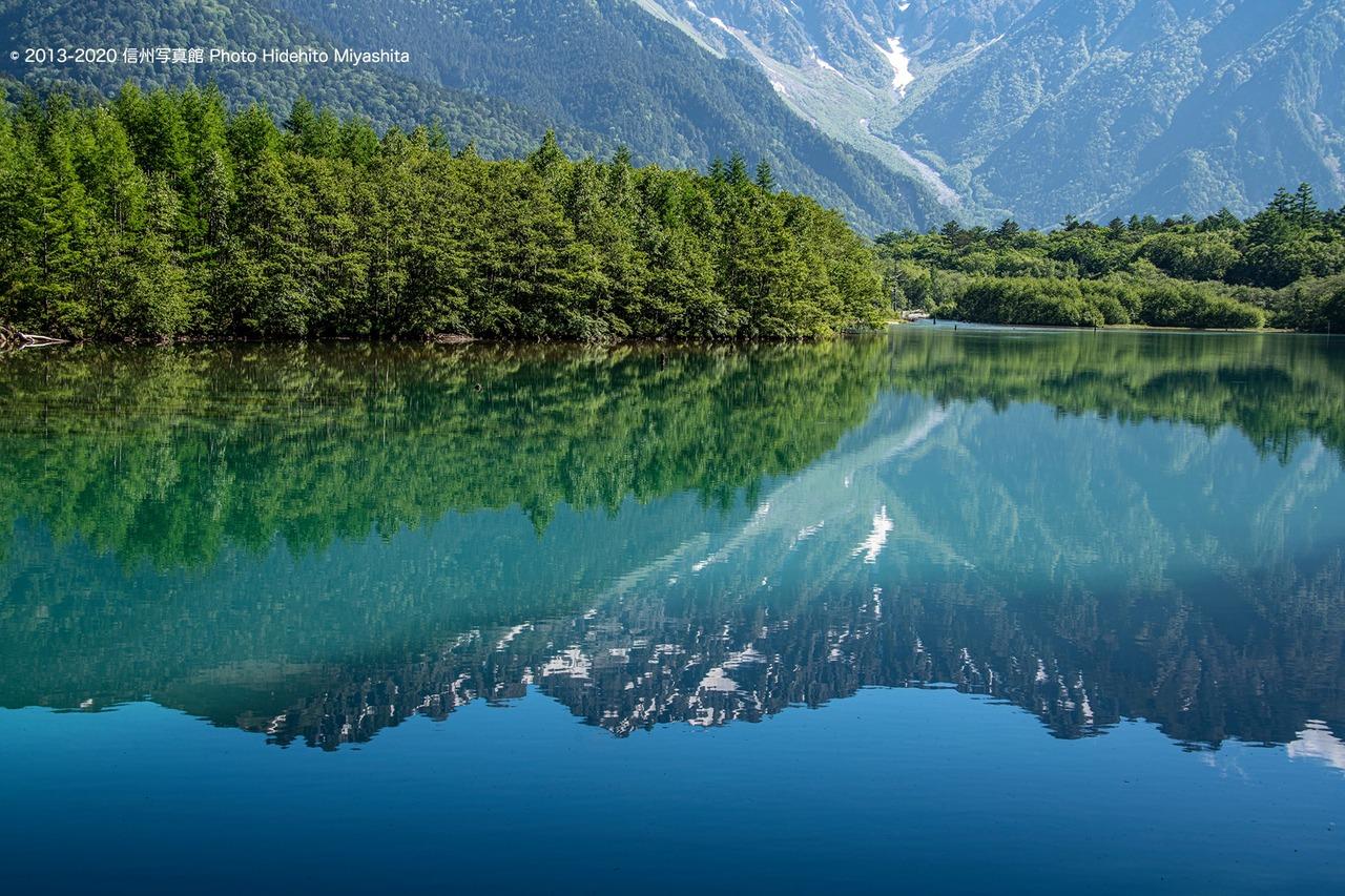 緑眩しい大正池