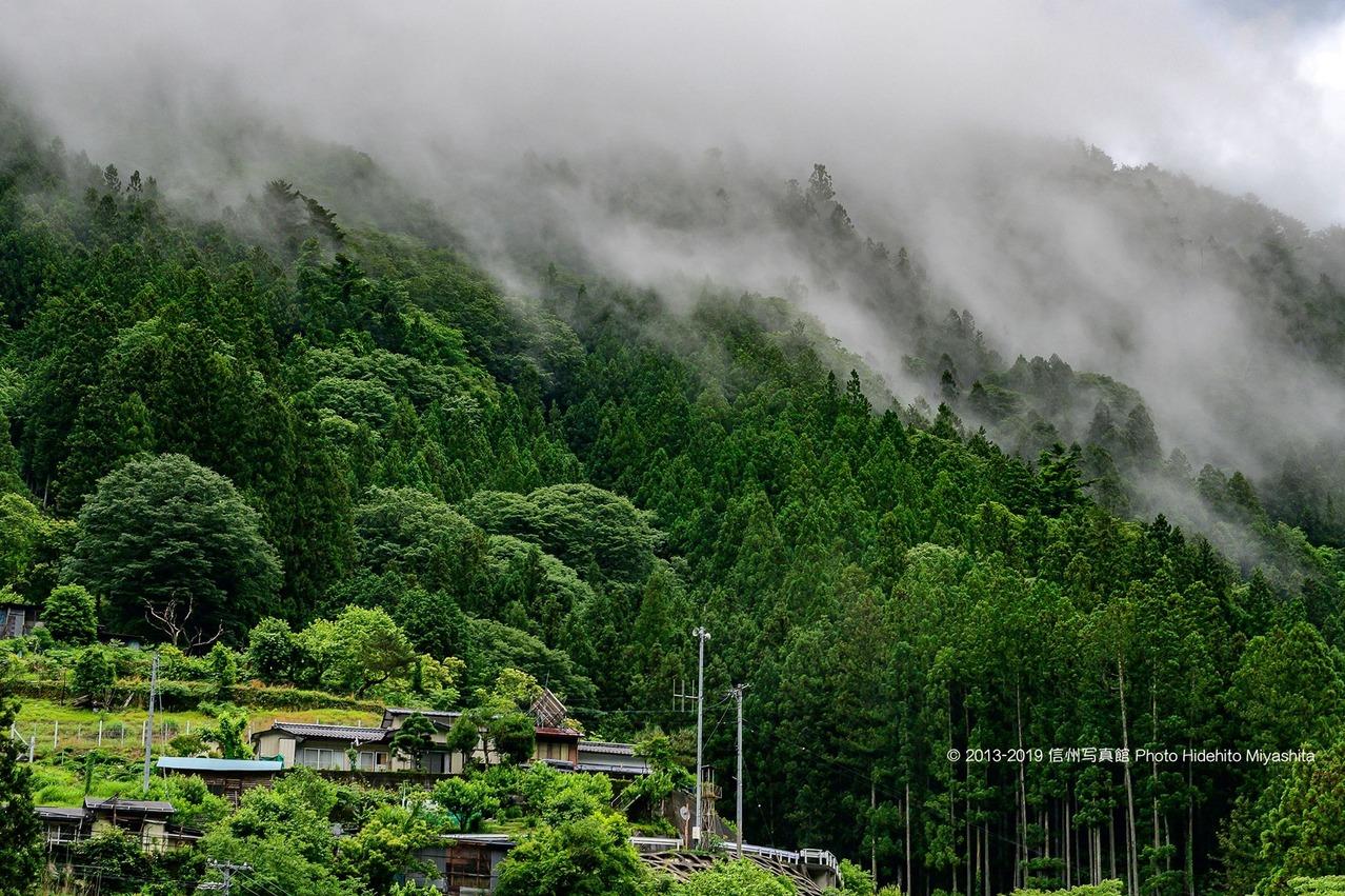 雨上がりの里山