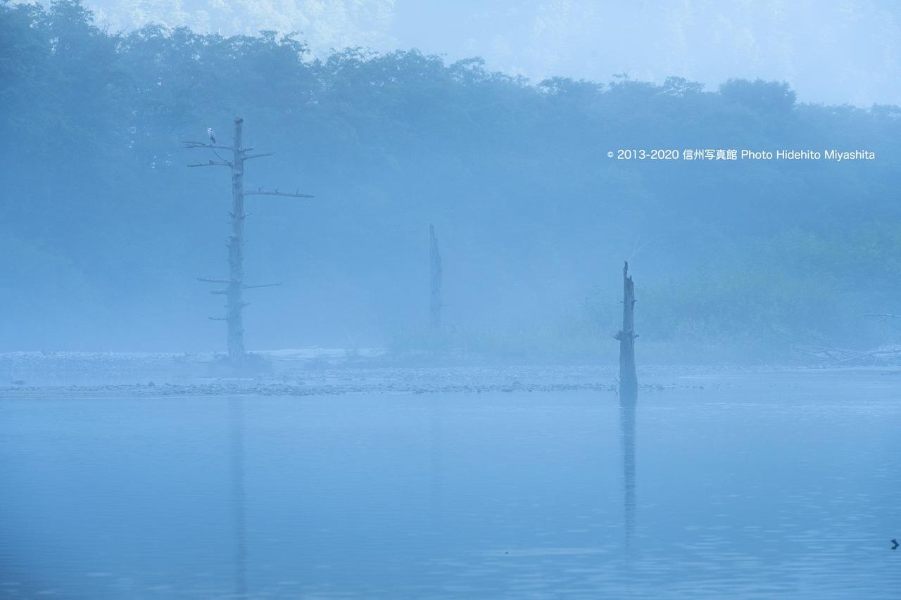 煙る大正池