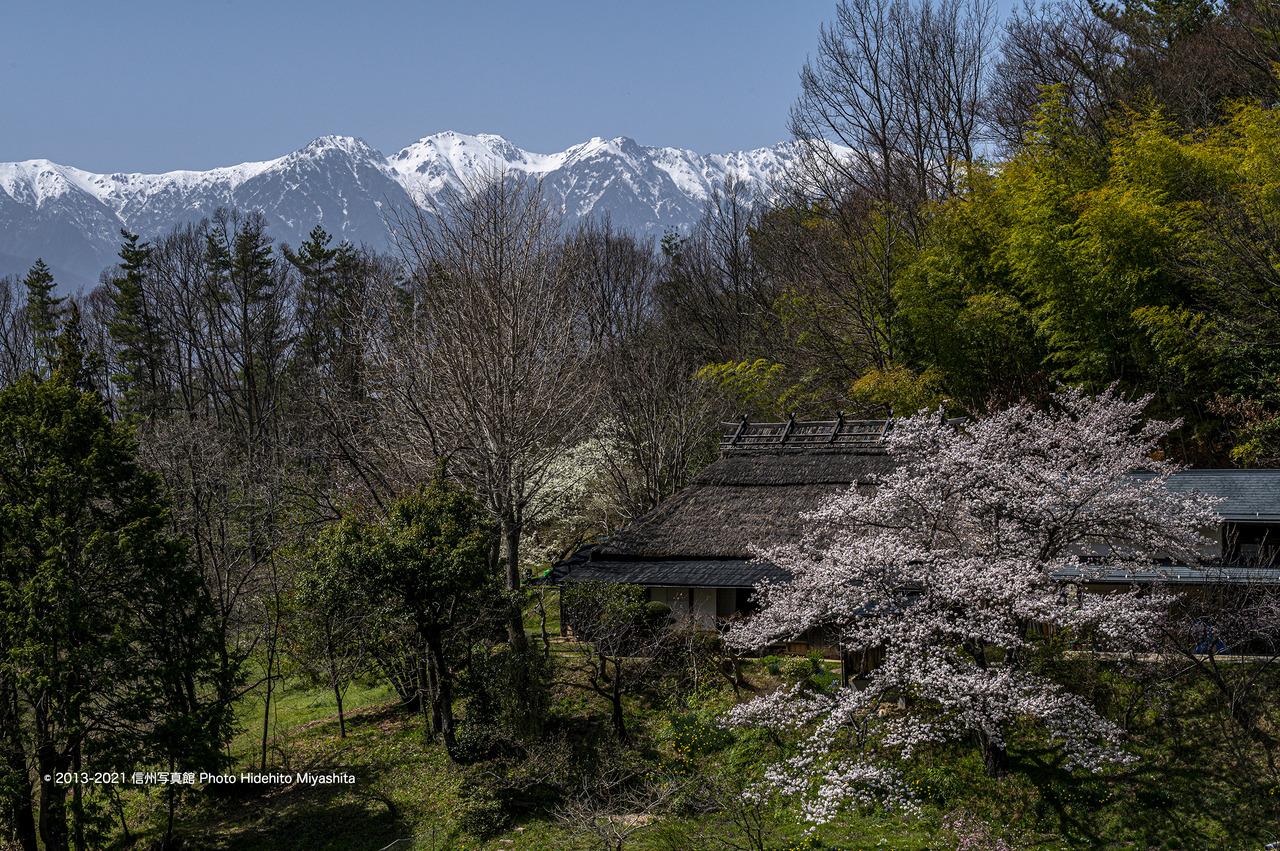 春の原風景_20210331-DSC_8794