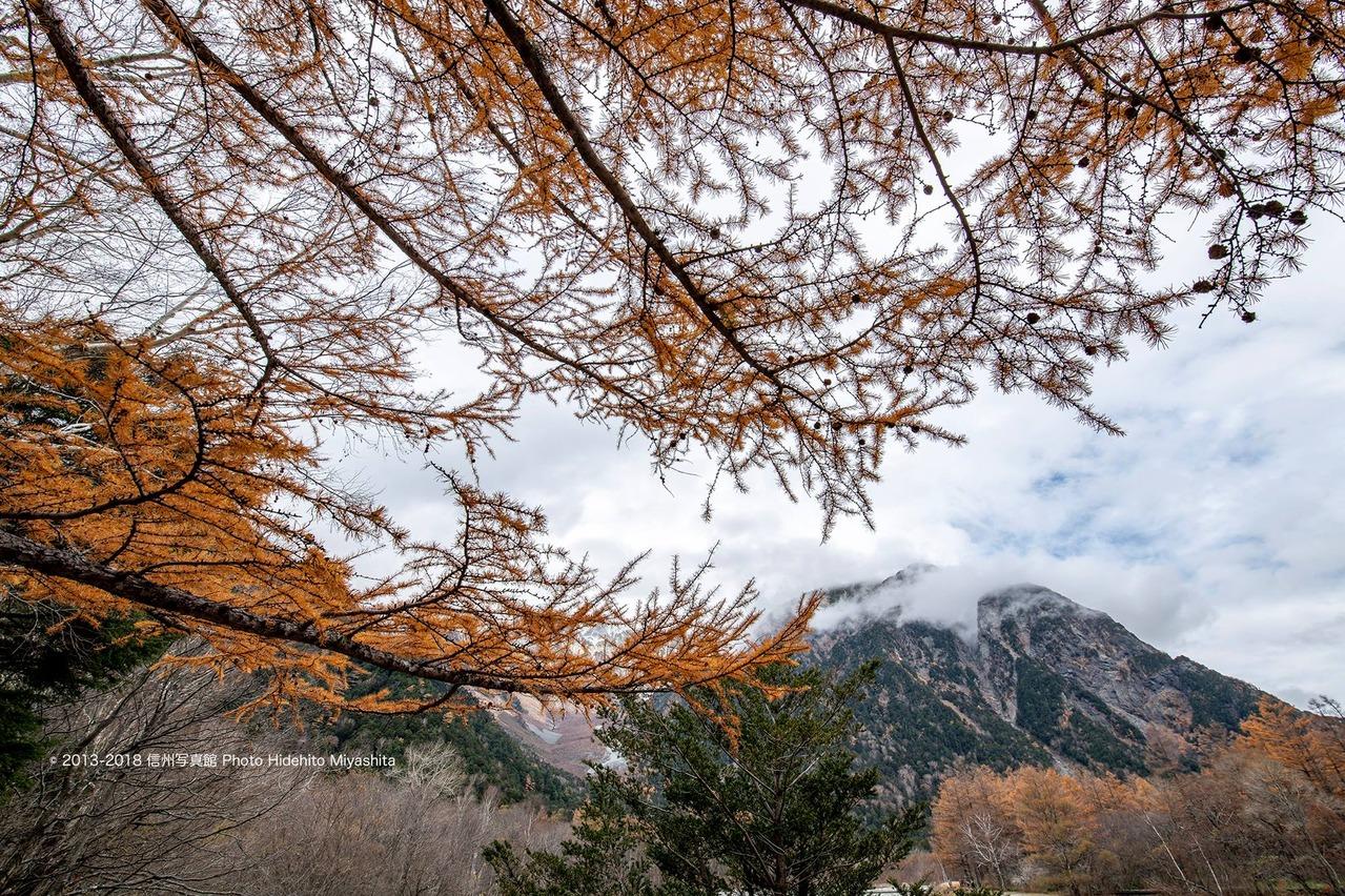 落葉松と雲に煙る明神岳