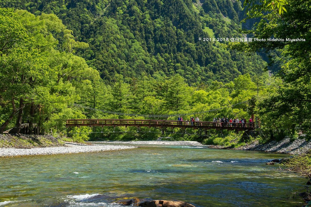 緑の中の河童橋