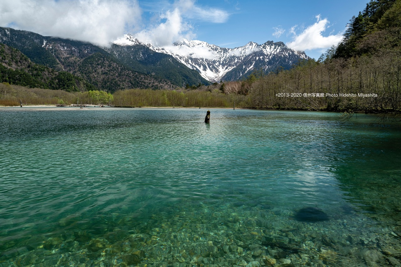 水温む大正池