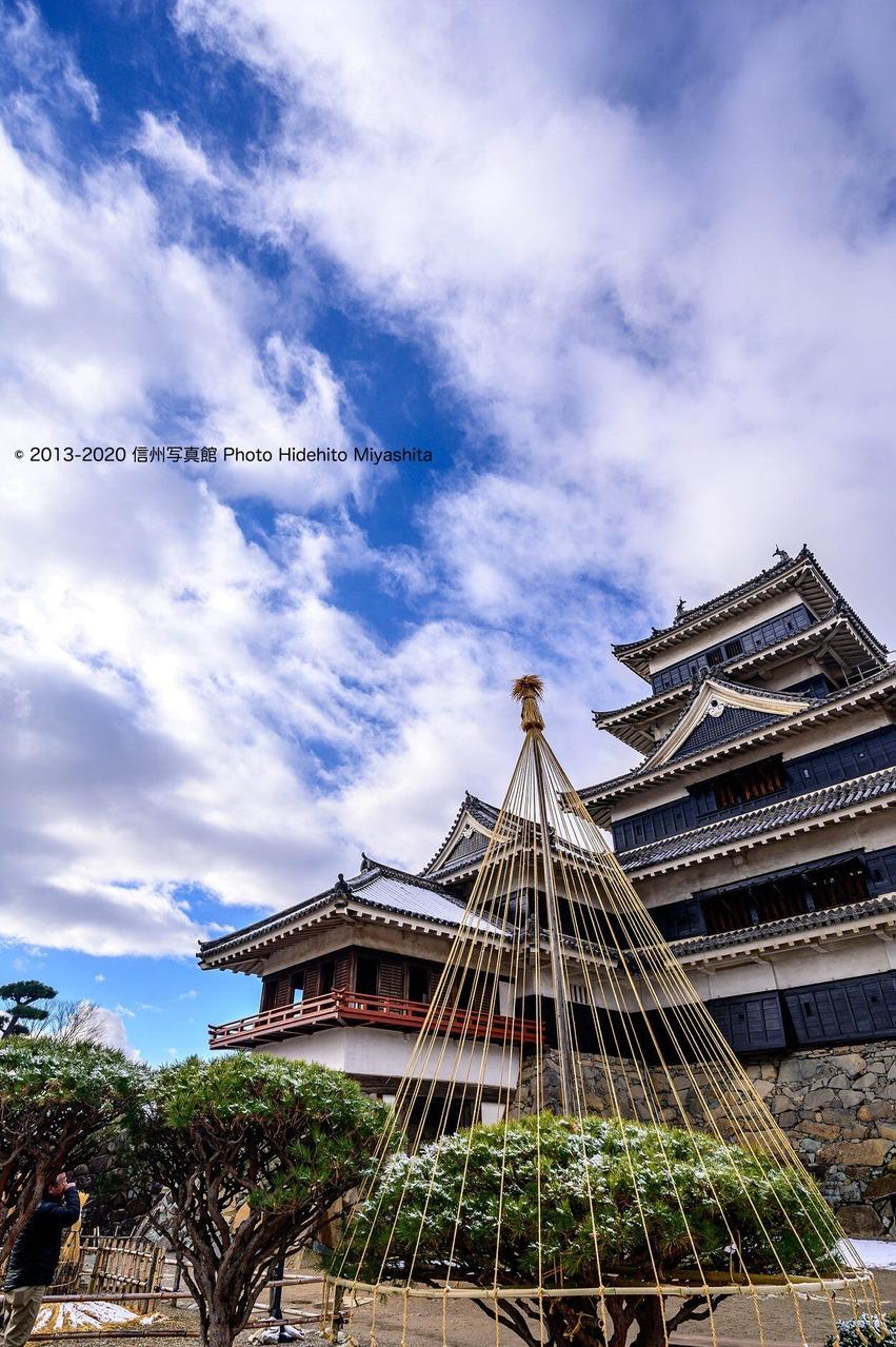 雪吊りと聳える松本城