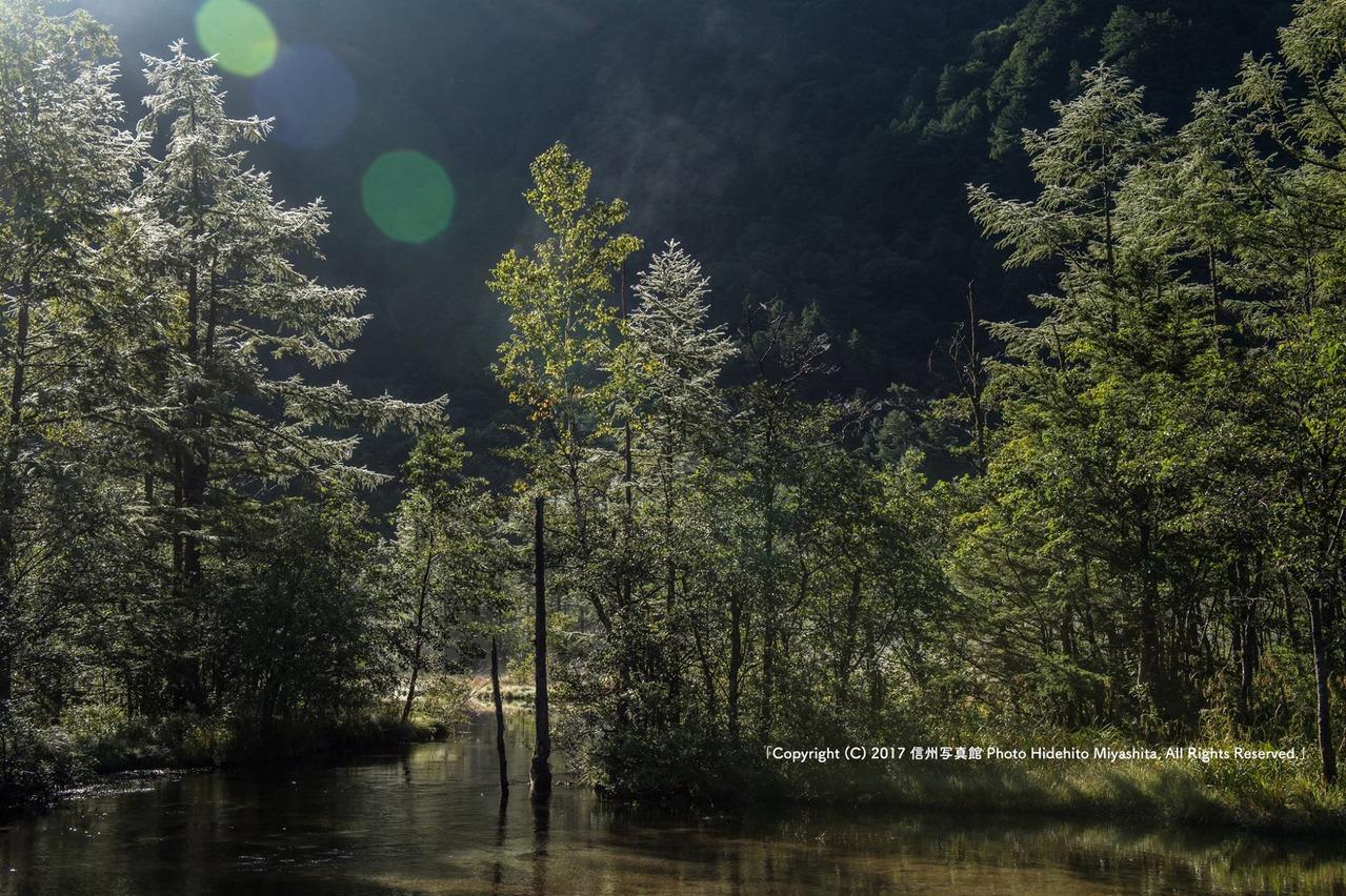 輝く田代池