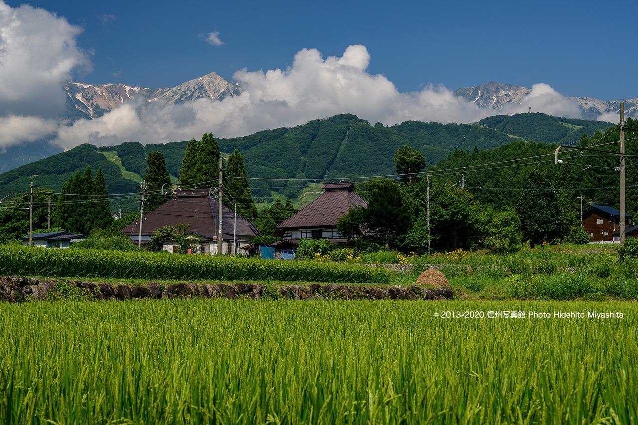 真夏の白馬村