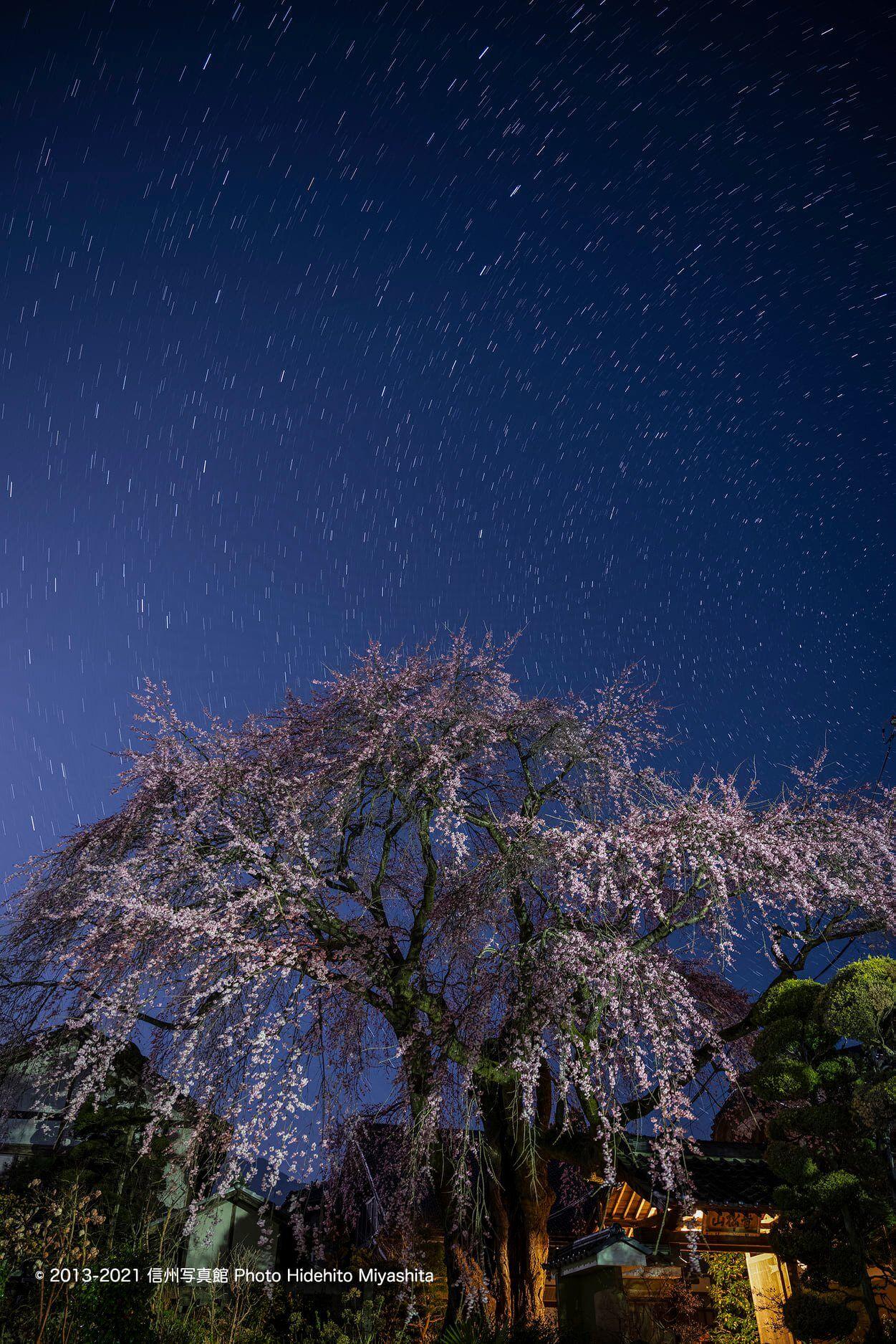 星夜の黄梅院