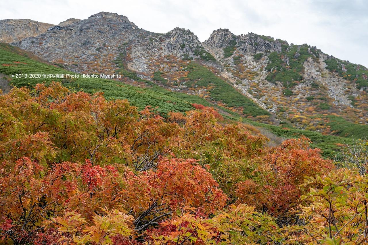 紅葉御嶽山