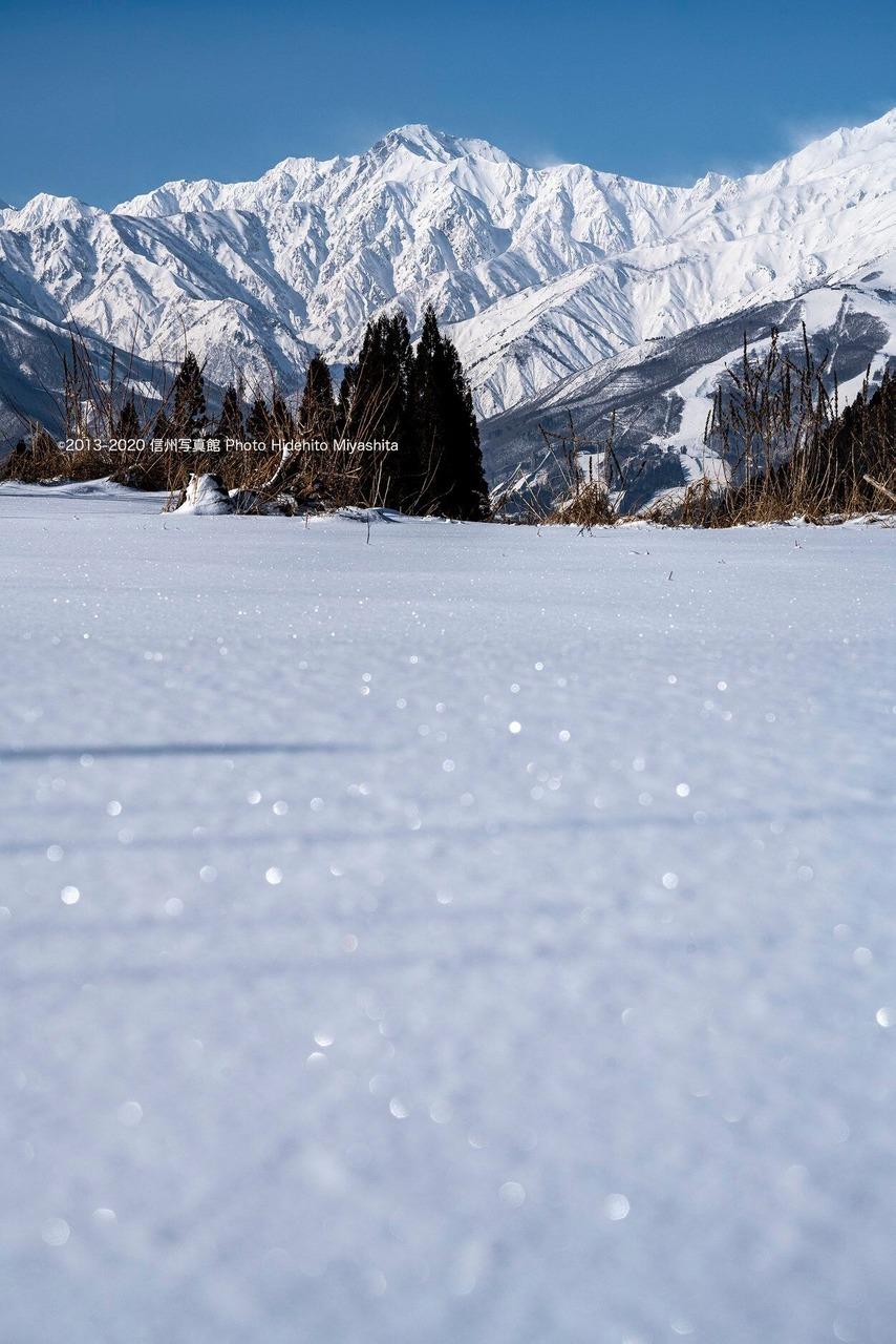 雪原と五竜岳