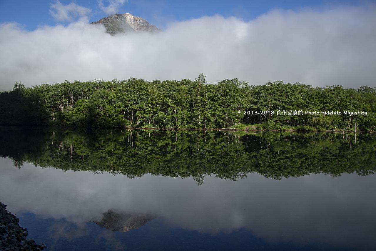 大正池のシンメトリー20180616-_DSC6457