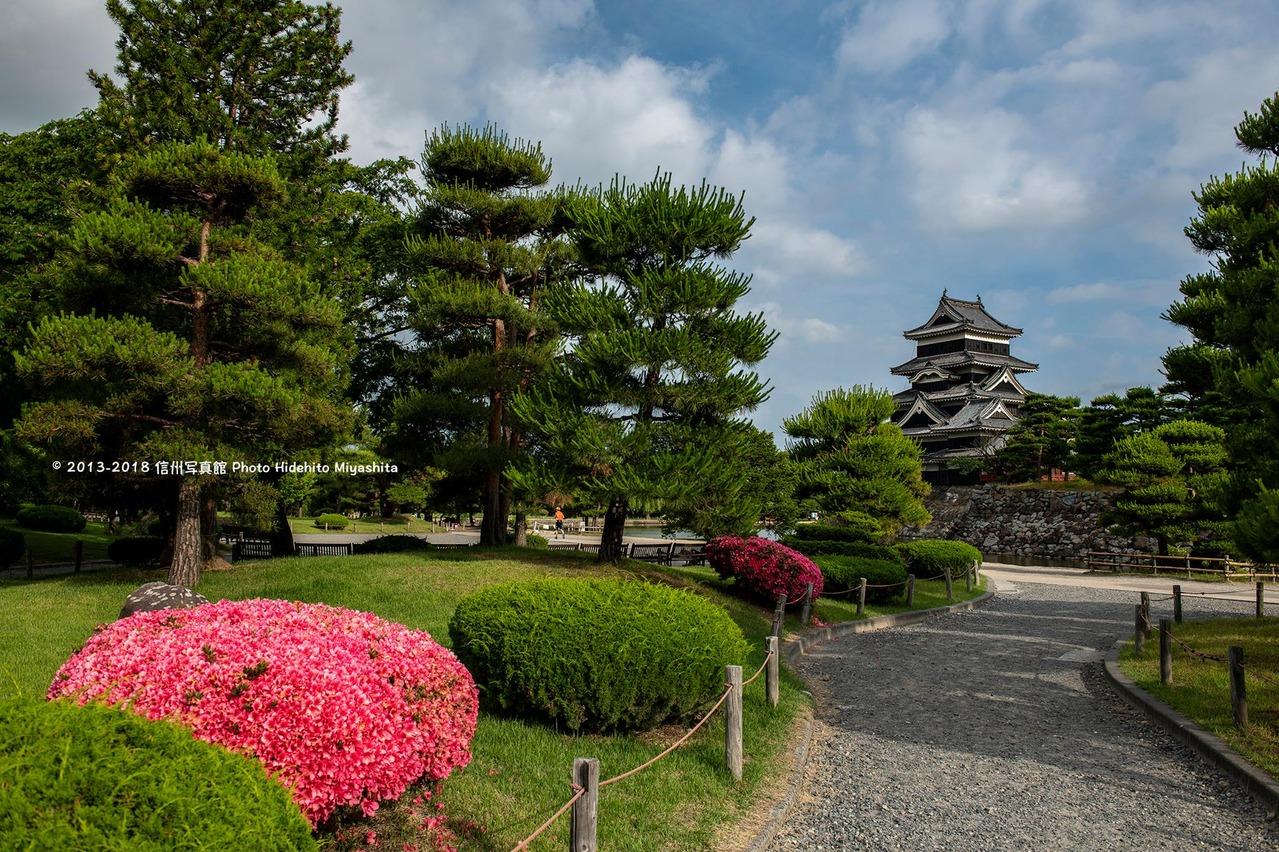 ツツジ咲く松本城