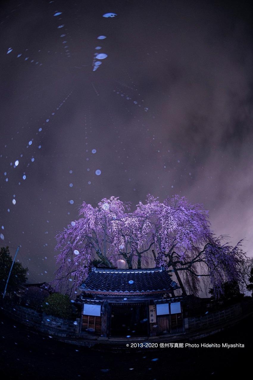 増泉寺の夜