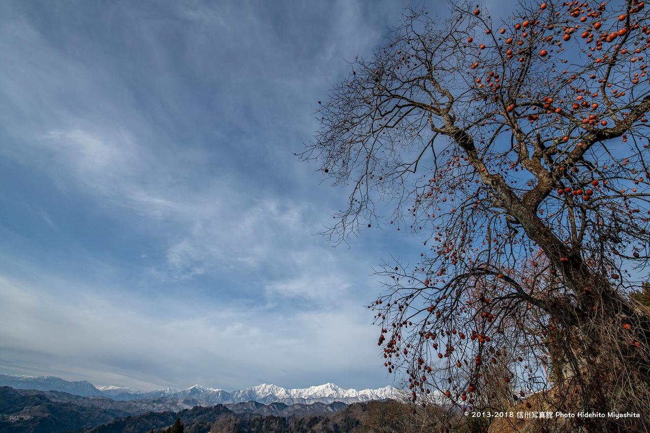 残り柿と仁科三山