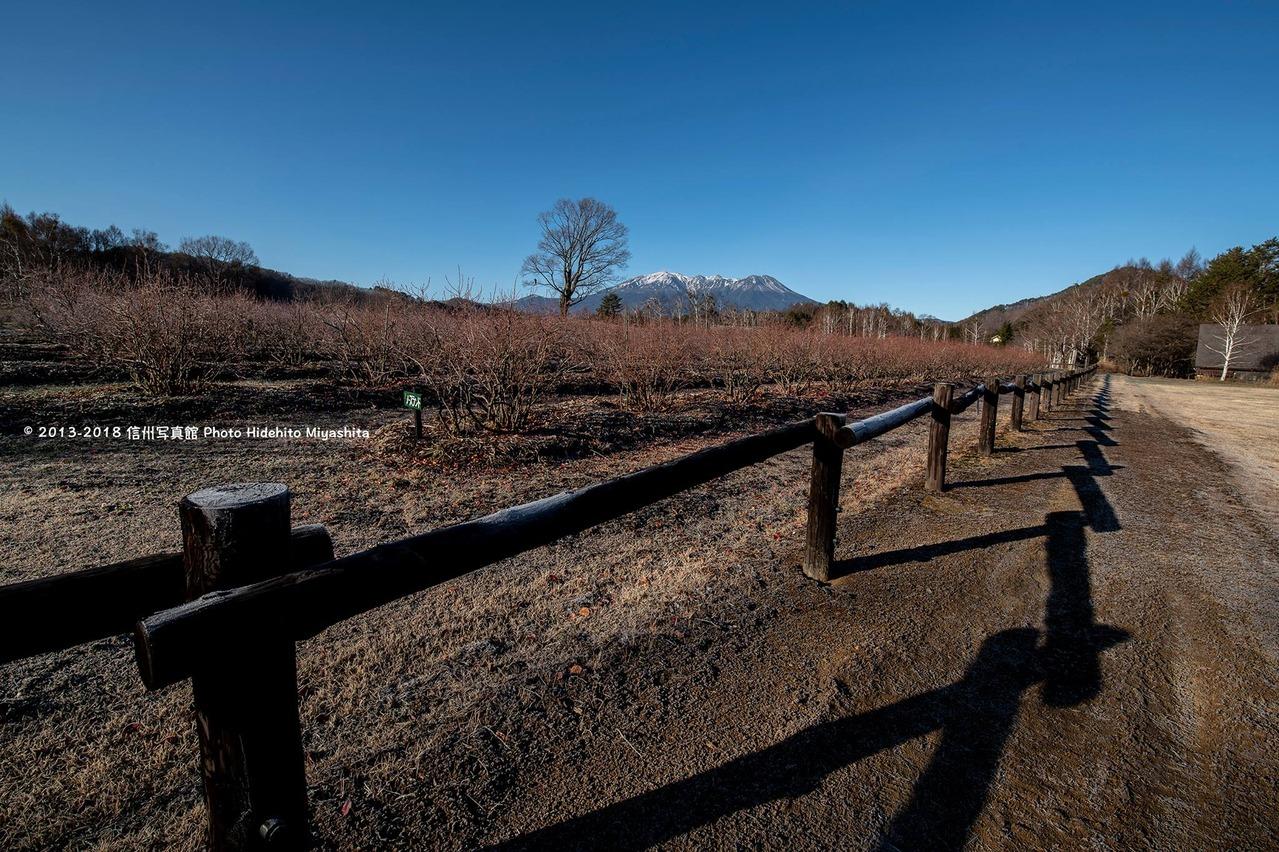 冬の開田高原 朝景