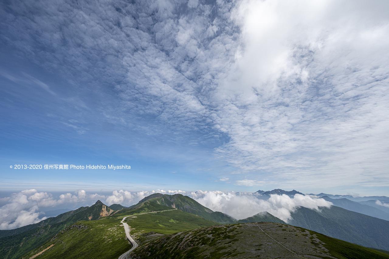 乗鞍岳の夏_20200804-DSC_0512