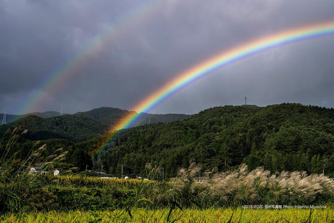 ススキと二重の虹