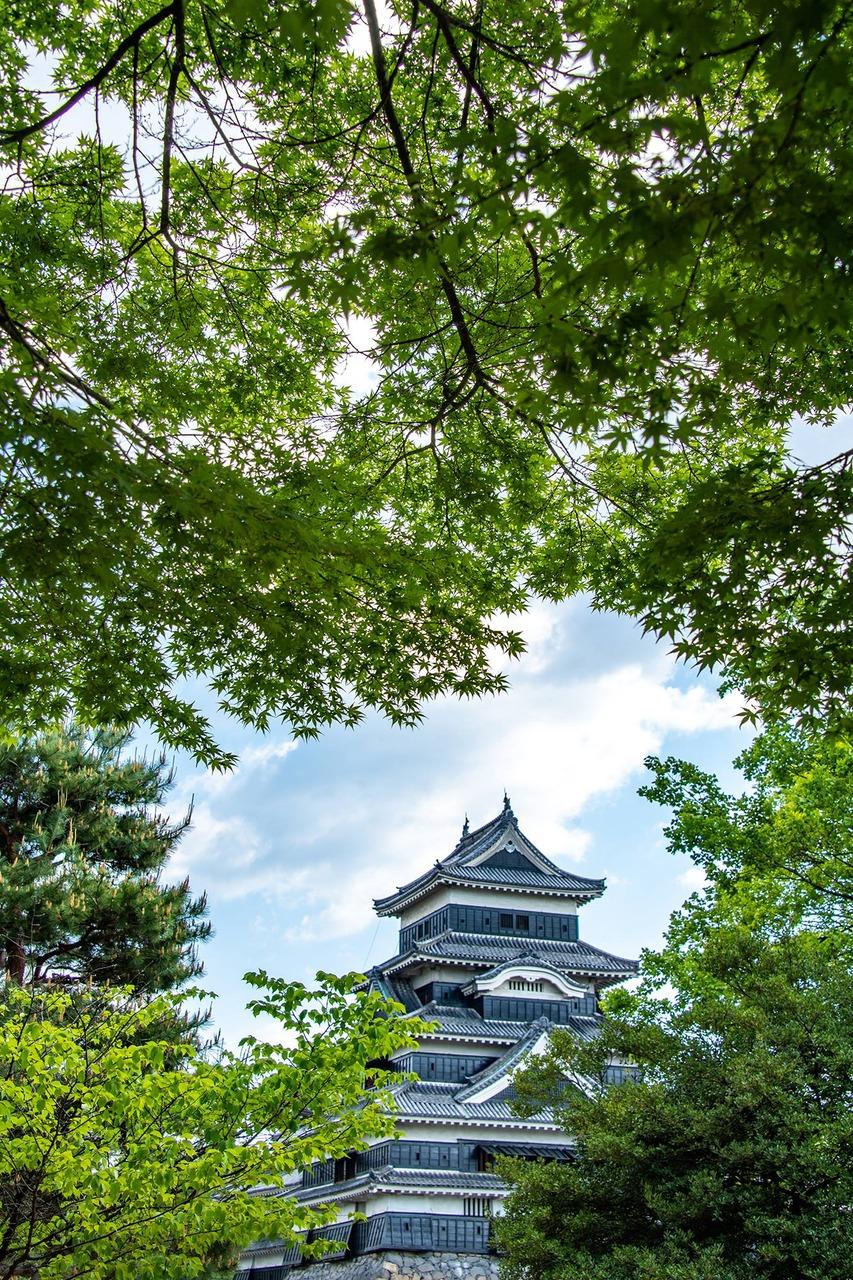 緑眩しい松本城