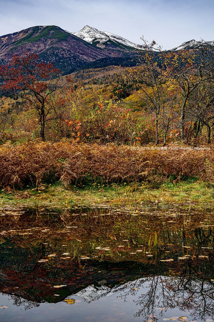 深まる秋のシンメトリー…