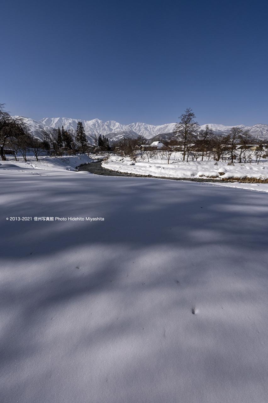 雪の大出_20210115-_DSC6697