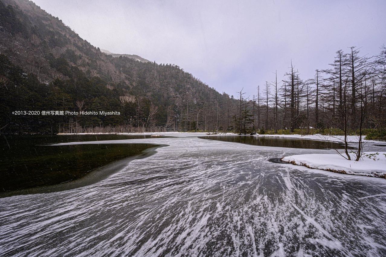 冬の明神池